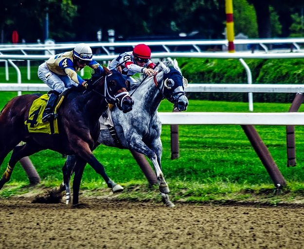 Saratoga in the Summer horse race